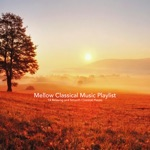 Mellow Classical Music Playlist:14 Relaxing and Smooth Classical Pieces
