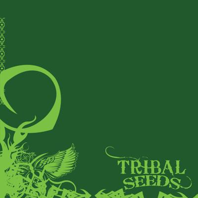 Dark Angel - Tribal Seeds song