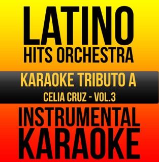 Instrumental Karaoke Series: Celia Cruz, Vol. 3 (Karaoke Version) – Latino Hits Orchestra