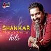 Shankar Mahadevan Hits