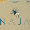Pav Dharia - Na Ja artwork