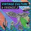 Vintage Culture Friends 2 EP