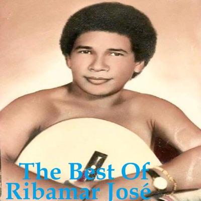 The Best Of - Ribamar Jose