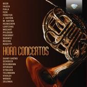 Concerto in E-Flat Major: I. Allegro maestoso artwork