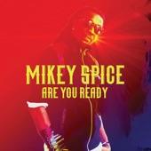 Mikey Spice - Everybody Needs Love