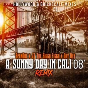 Wonderful Feelin (A Sunny Day In Cali 08) [Remix] [feat. Figg Panamera] - Single Mp3 Download