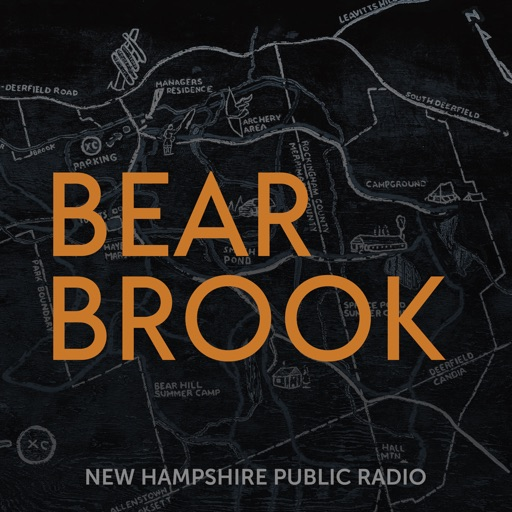 Cover image of Bear Brook