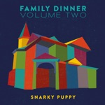 Snarky Puppy - Sing to the Moon (feat. Laura Mvula & Michelle Willis)