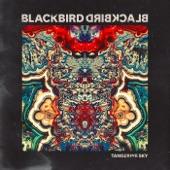 Blackbird Blackbird - Love Unlimited