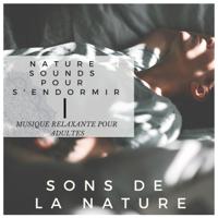 Musique Relaxante et Détente Maestro - Sons de la Nature - Nature sounds pour s'endormir, musique relaxante pour adultes artwork