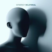 Synergy - Bilateral