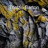 Tristan Barton - Artlist ilustración