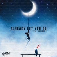 Already Let You Go (feat. Anthony E.)-Vigiland