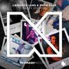 Laidback Luke & Mark Bale - Party Starter artwork