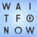 Wait for Now (feat. Tawiah) - The Cinematic Orchestra