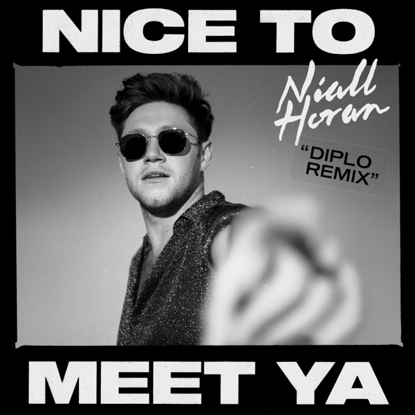 Nice to Meet Ya (Diplo Remix) - Single