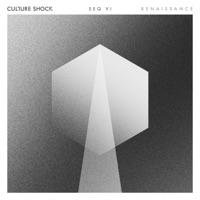 Renaissance - CULTURE SHOCK