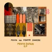 Penya Na Msafiri Zawose - Aalto