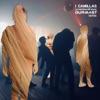 La macchina dell' amore (Durmast Remix) - Single, I Camillas