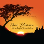 Steve Roach & Serena Gabriel - Nectar Meditation