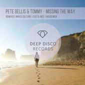 [Download] Missing the Way (feat. Nikko Culture) [Nikko Culture Remix] MP3