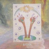 Biota - Balancer