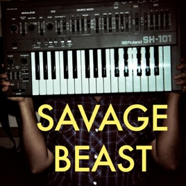 Savage Beast: Indie Music Podcast: Meaningful Hip Hop, Pt  2