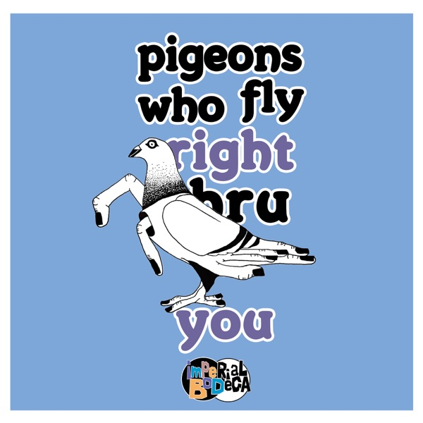 Pigeons Who Fly Right Thru