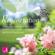 Seraphine Monien - Regeneration - Stress abbauen und neue Energie tanken - Entspannungsübung und geführte Meditation