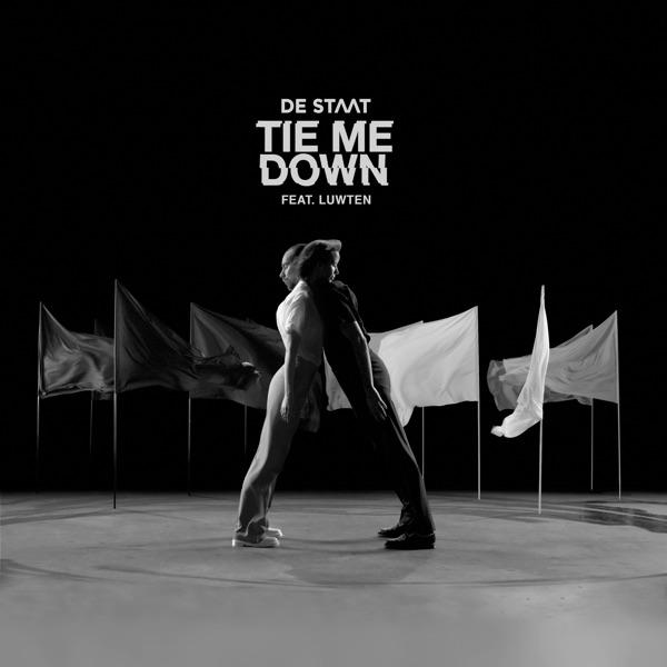 Tie Me Down (feat. Luwten) - Single