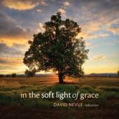 David Nevue - Walking in Trust