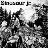 Dinosaur Jr. - Does It Float