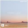 DESERT STAR - Foreign Land bild
