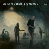 Avishai Cohen - Various