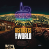 From the Streets to the World - Distruction Boyz