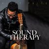 Ricky Price - Sound Therapy  artwork