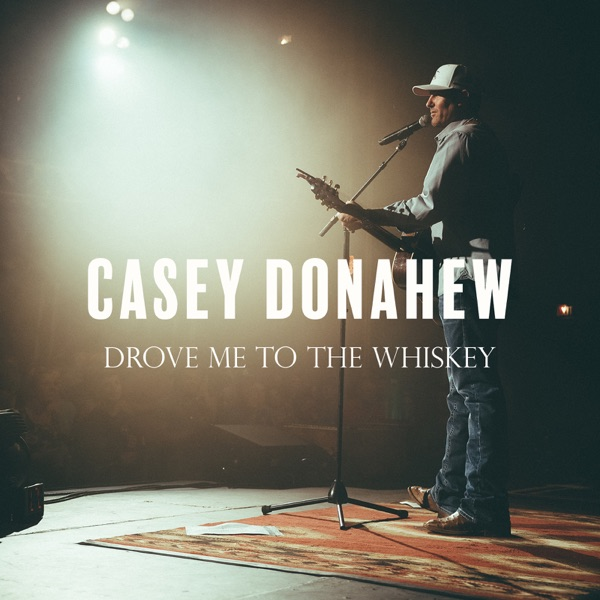 Drove Me to the Whiskey - Single