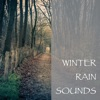 Winter Rain Sounds