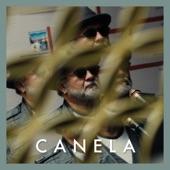 César Mora, Diana Ángel & Juan José Salazar - Canela (Duck Sessions)