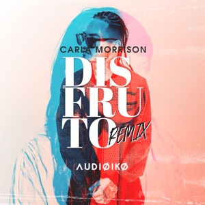 Disfruto (Audioiko Remix) - Single