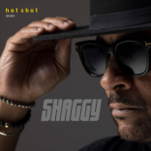 Electric Avenue (Hot Shot 2020) - Shaggy