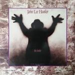 John Lee Hooker - The Healer (feat. Carlos Santana & The Santana Band)