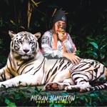 Megan Hamilton - Crash (feat. Freez)
