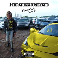 descargar bajar mp3 Ferrari N a Junkyard - Robnhood Tra