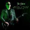Joe Satriani - When Trees Walked the Earth bild