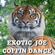 Exotic Joe - Coffin Dance