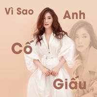 Download Mp3 Hương Tràm - Vì Sao Anh Cố Giấu - Single