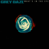 Grey Daze - What's In The Eye artwork