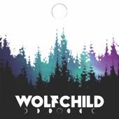 Gabriel Wolfchild - Shipwrecks