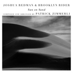 Joshua Redman & Brooklyn Rider - Flash (with Scott Colley & Satoshi Takeishi)